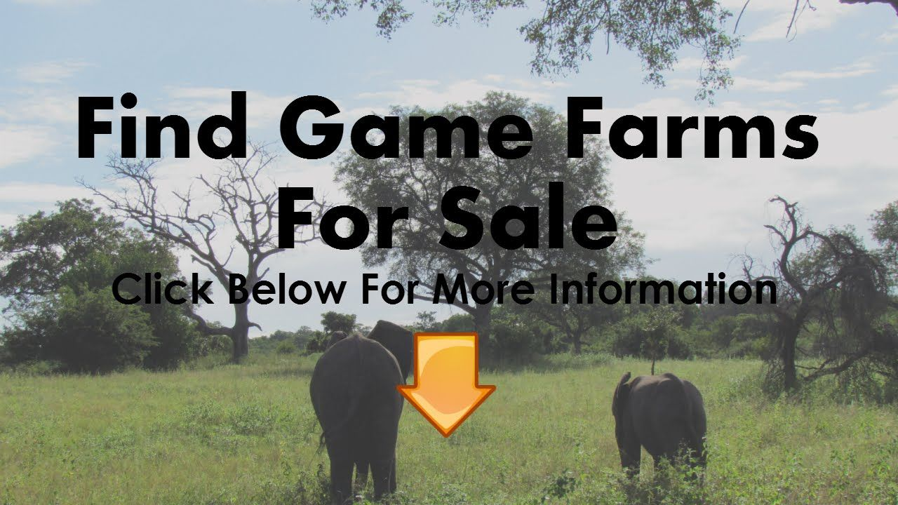 Game Farms For Sale in Mpumalanga