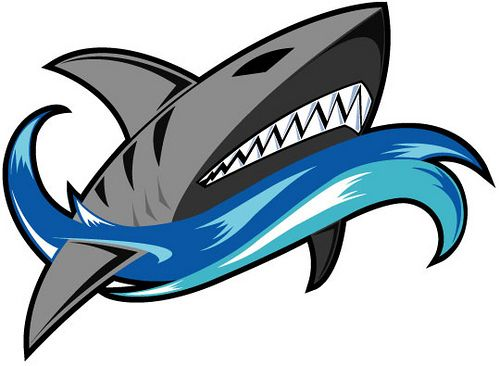 sharks logo flickr photo sharing