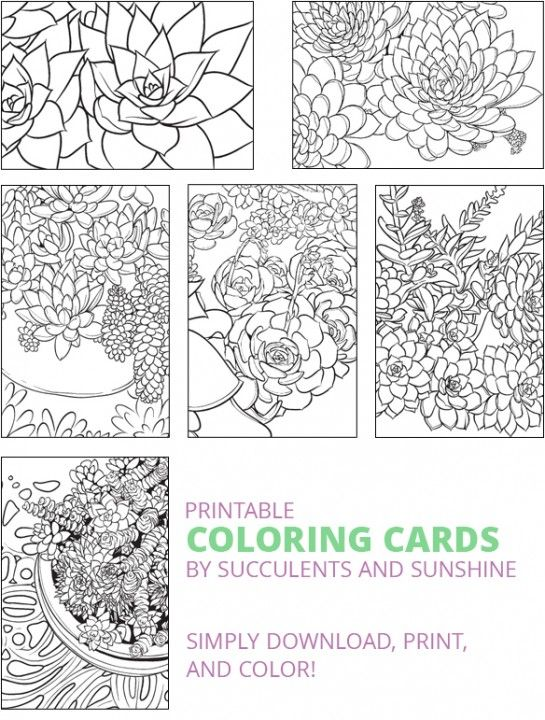 These Succulent Coloring Cards Are Gorgeous And So Versatile