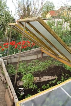 48b0ea3f9e6316a05db77a21698cb62f - What Is A Hot Bed Gardening