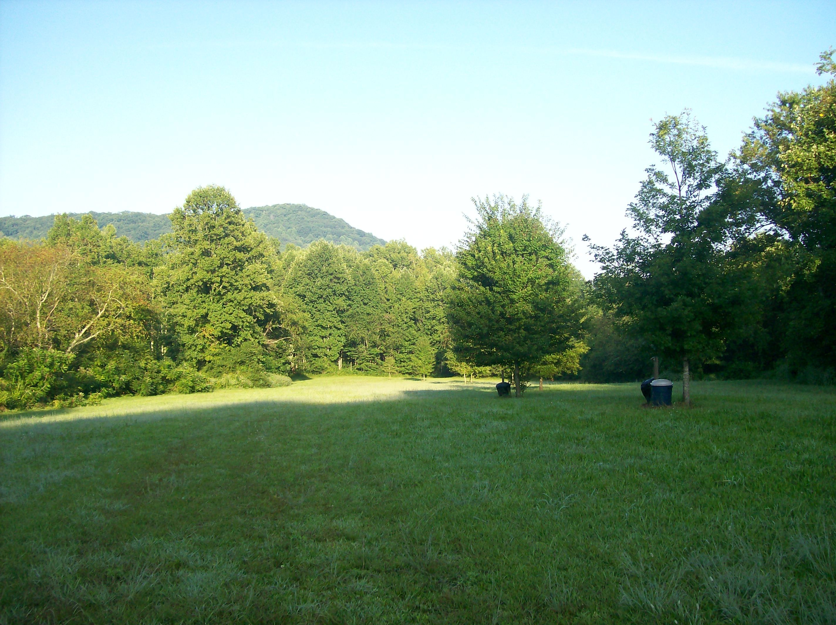 Our primitive camping area is 3 acres and provides awesome views of the surrounding mountains during the day and at night unparalleled star gazing.  It also backs up to one of our 3 creeks that provide a sound that truly wipes away the stress.