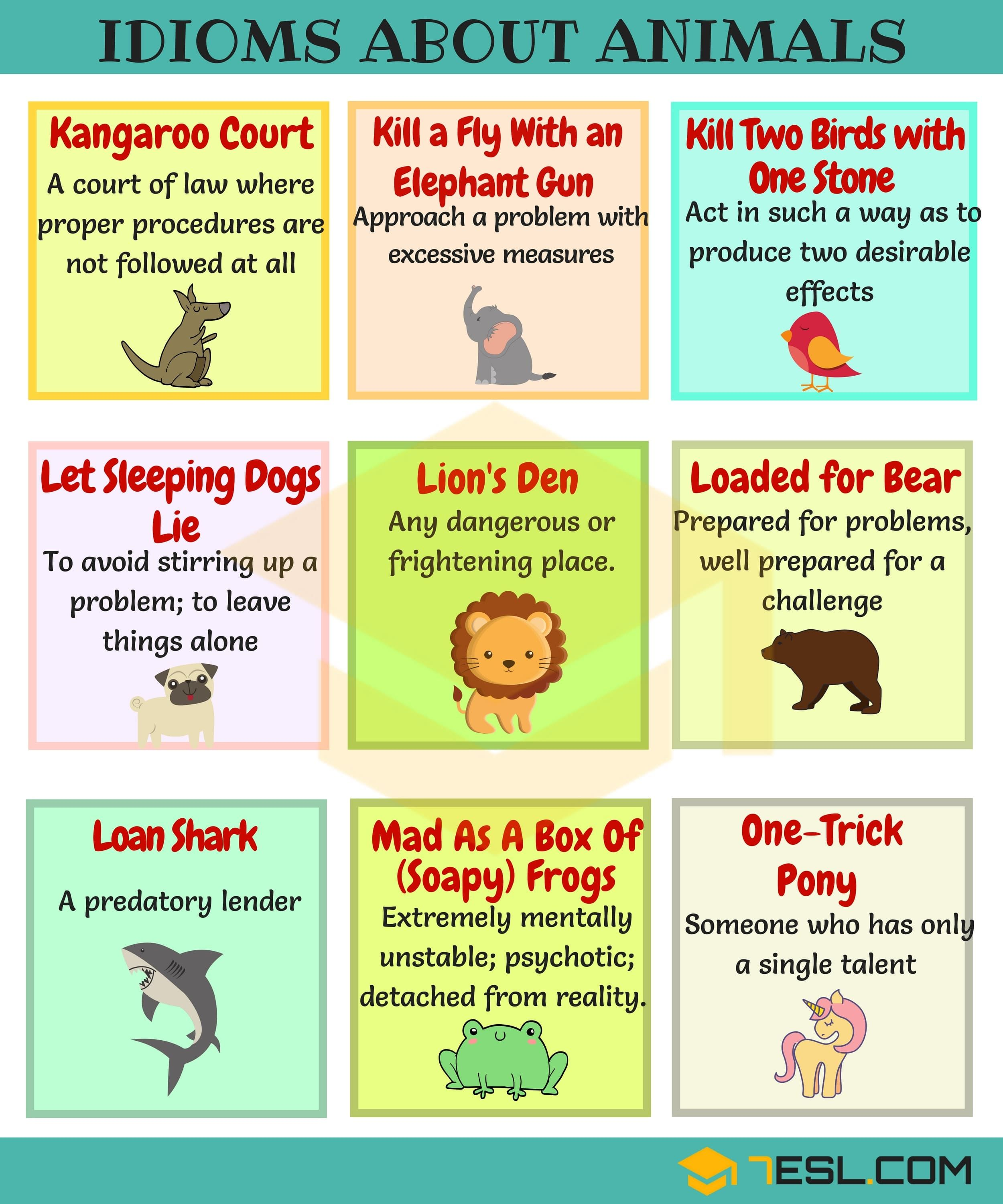 List Of Idioms About Animals In English F To Y English English