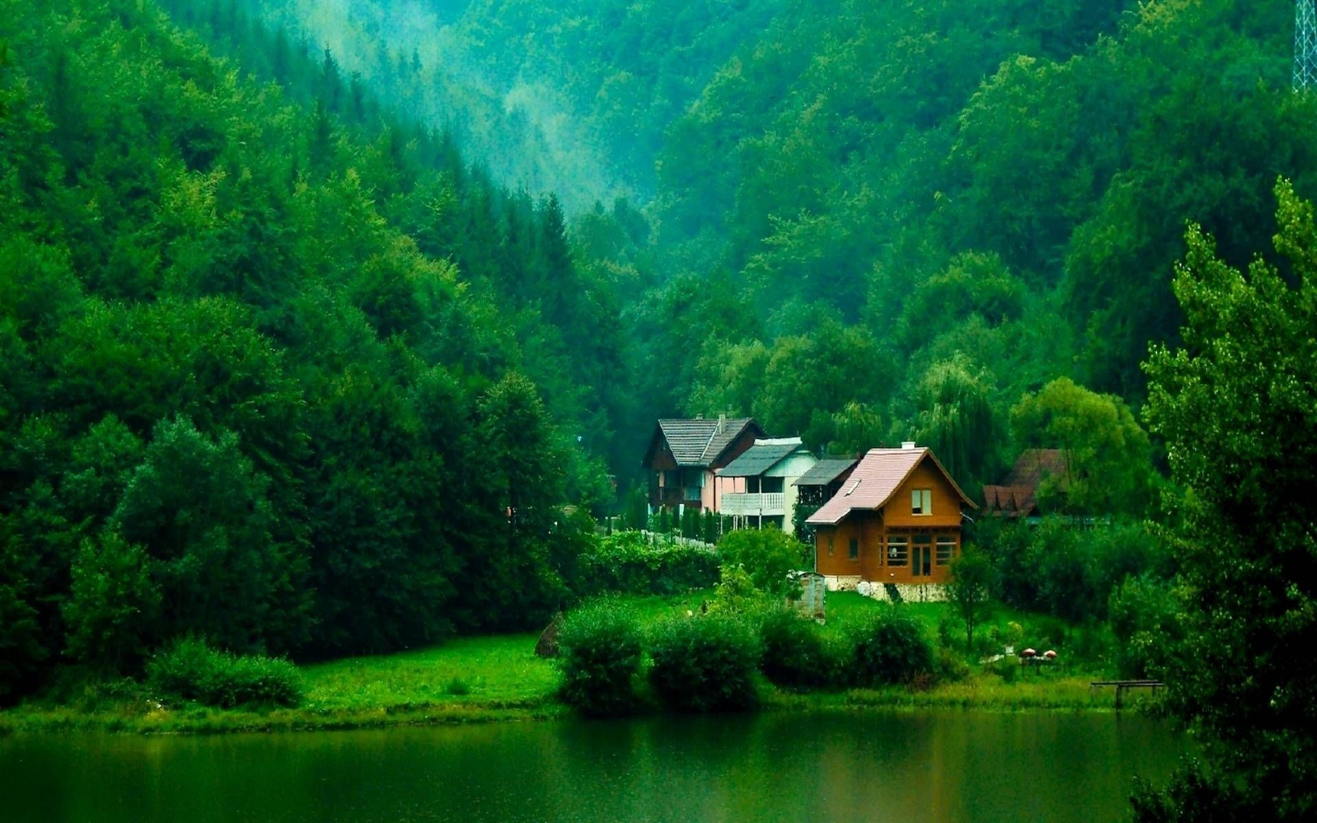 1920x1200 Hd Wallpaper Nature Beautiful Places In The World Forest House Places Around The World