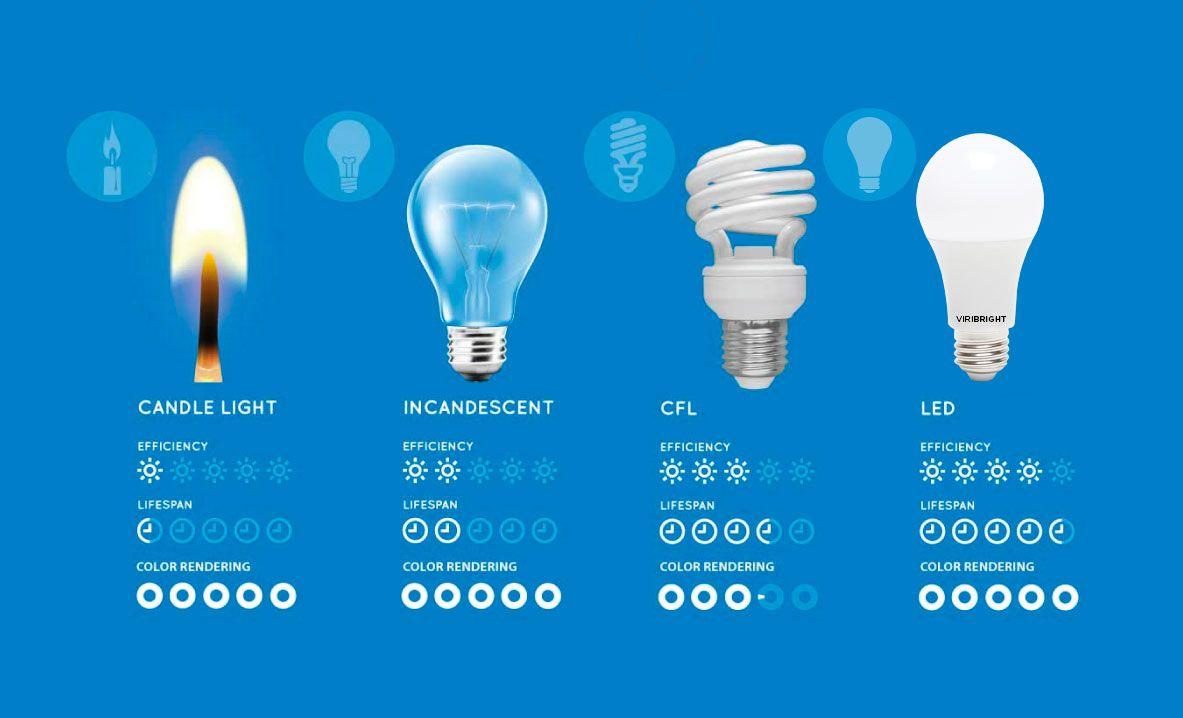 Comparing Led Vs Cfl Vs Incandescent Light Bulbs With Images Led Fluorescent Light Light Bulb Fluorescent Light Bulb