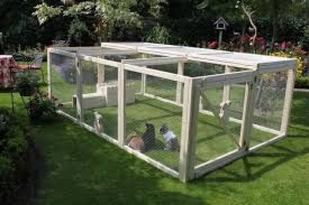 Bildergebnis Fur Kaninchen Aussengehege Selber Bauen Rabbithouses Kaninchen Aussengehege Kaninchengehege Und Aussengehege