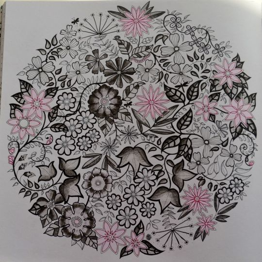 Image Result For Secret Garden Coloring Book Completed Pages