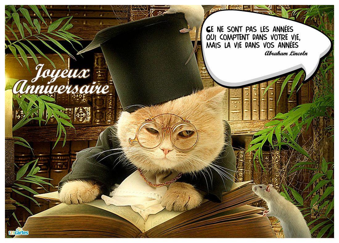 Carte anniversaire humour avec la photo d'un chat citant ...