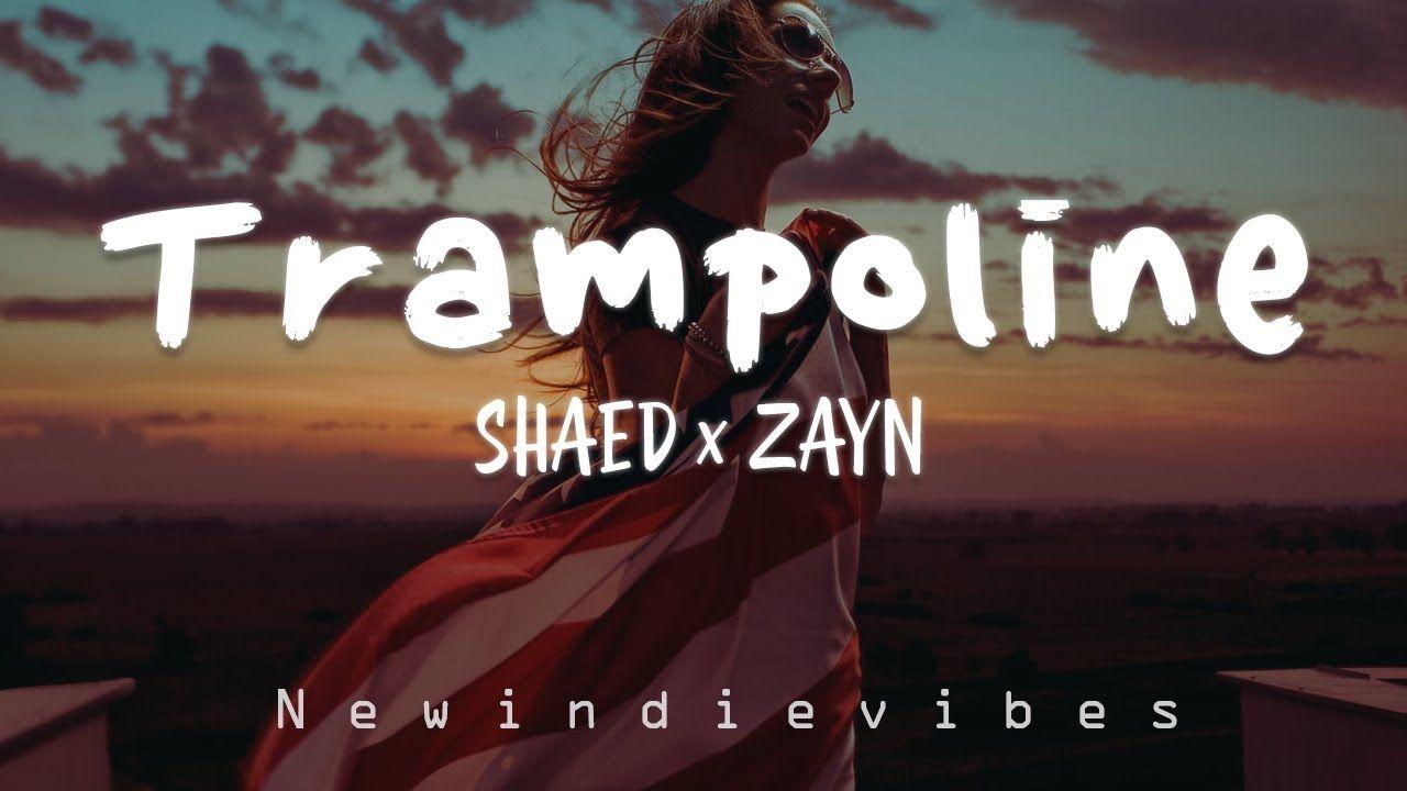 Trampoline shaed lyrics