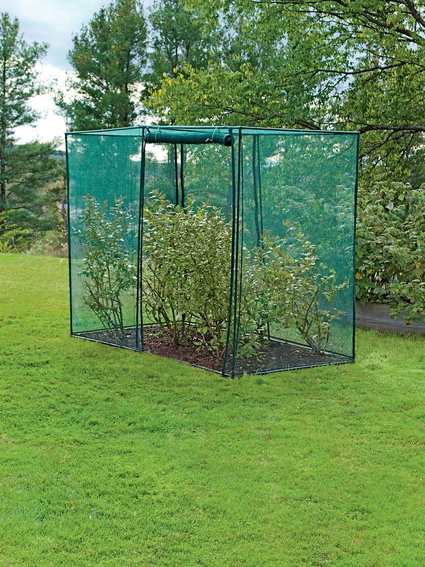 Crop Cage 4 Ft X 8 Ft X 6 Ft Tall Gardener S Supply
