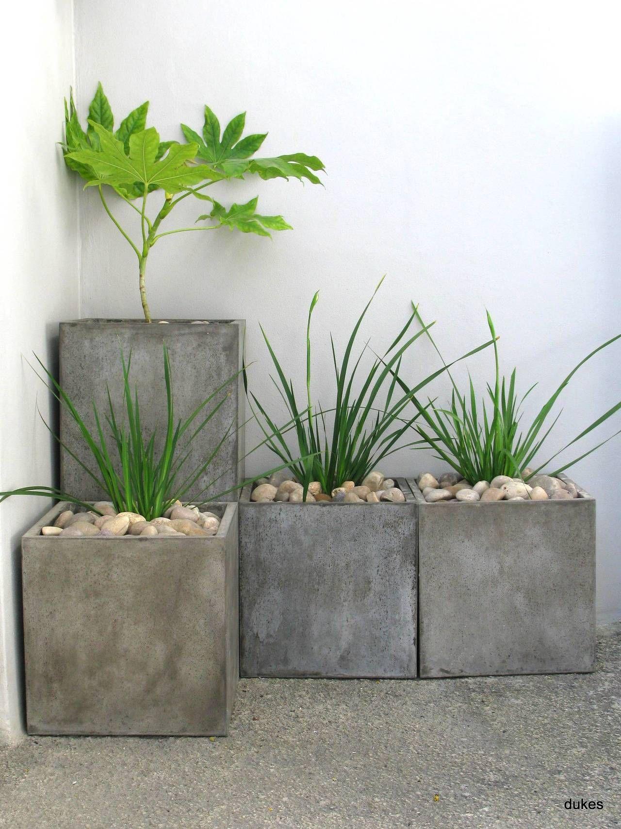 Amo estas macetas patios internos pinterest macetas - Macetas de piedra para jardin ...
