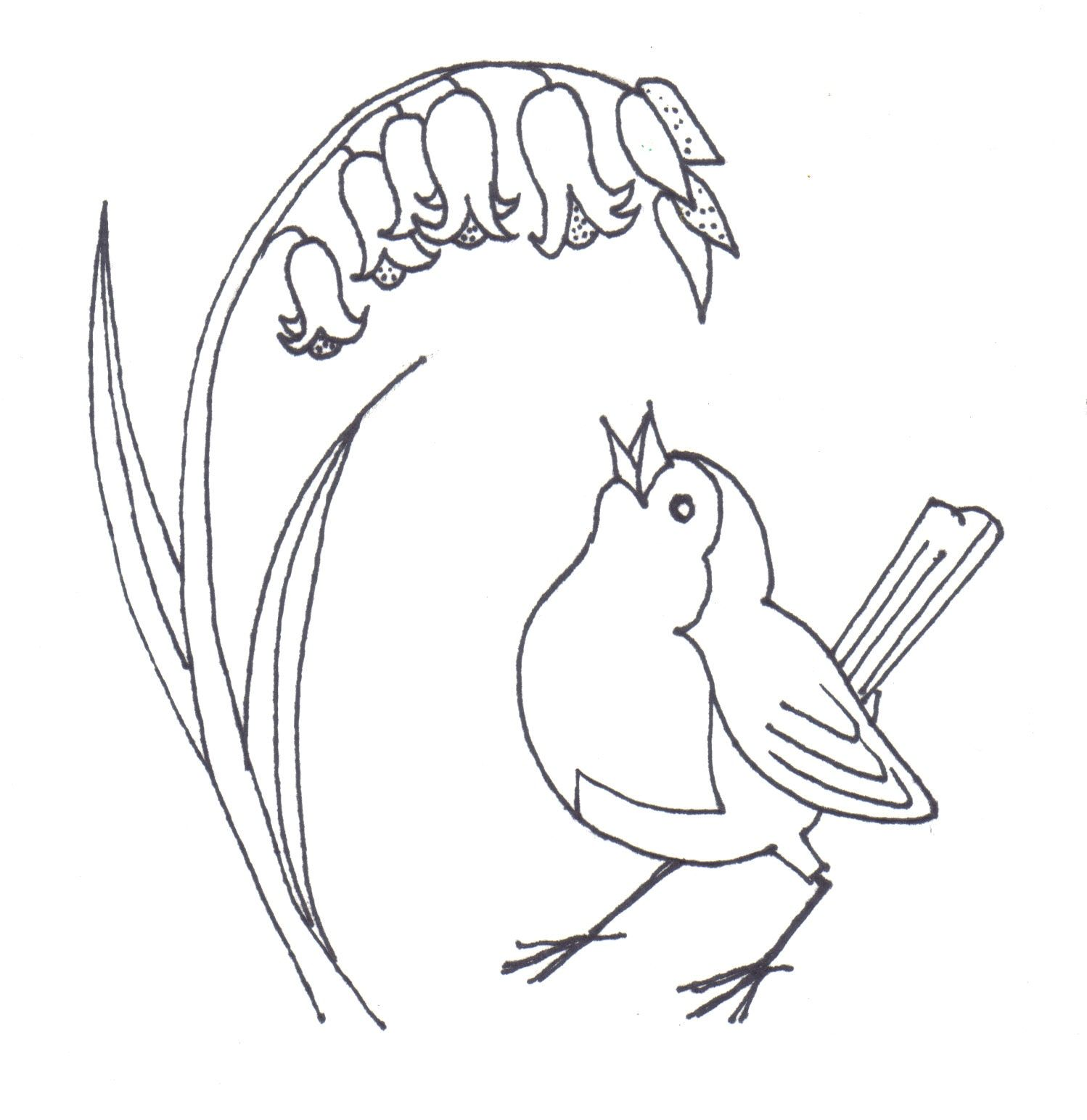 Simple Bird Line Art : Simple bird line drawing