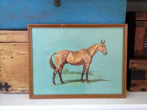 Vintage Framed HORSE Print with Fabulous Turquoise Background ...