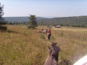 Конные туры  Horseback riding tours http://pohodural.ru/