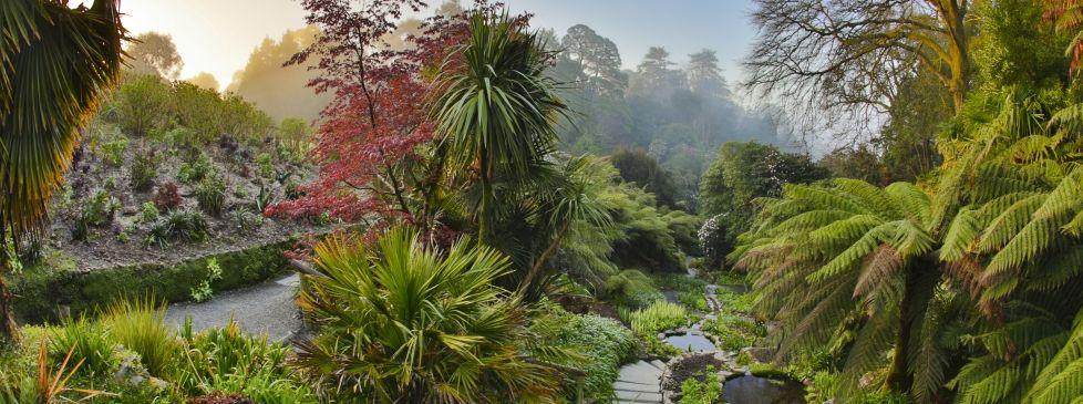 48b7dc05b34a00a5ccfbb58556cd2e8a - Pine Lodge Gardens St Austell Cornwall