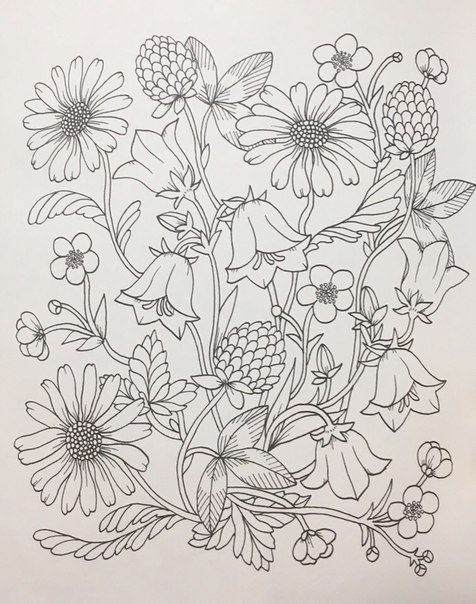 РаскраскиХанна КарлсонМария Тролле\'s photos | zentangles flowers ...