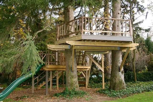 Collection in Backyard Treehouse Ideas Backyard Tree House Designs Plans Diy  Free Download How To Make A - Collection In Backyard Treehouse Ideas Backyard Tree House Designs