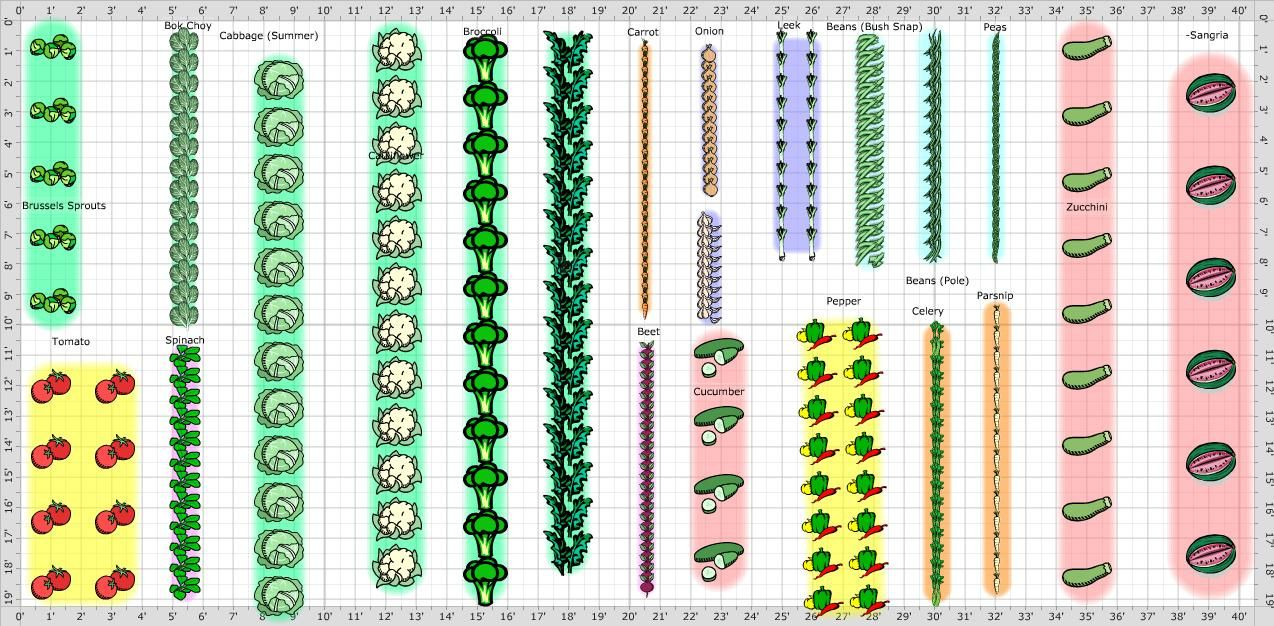 The evolution of Vegetable Garden Layout with 26 Photos | garden ...