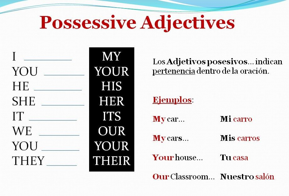 possessive adjectives english time pinterest. Black Bedroom Furniture Sets. Home Design Ideas