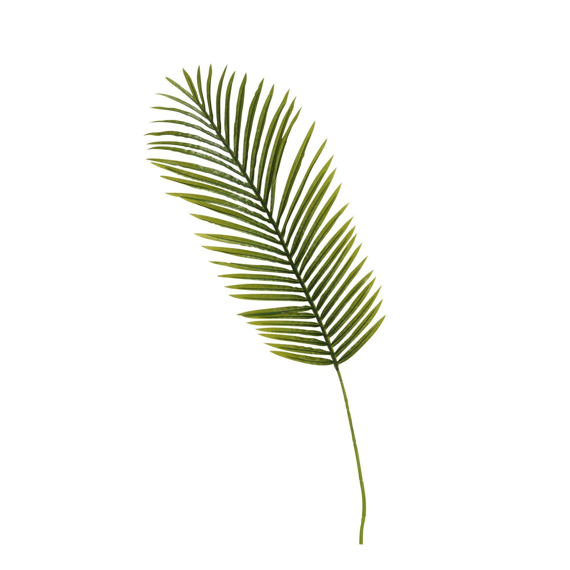Image result for La Palme D'Vert