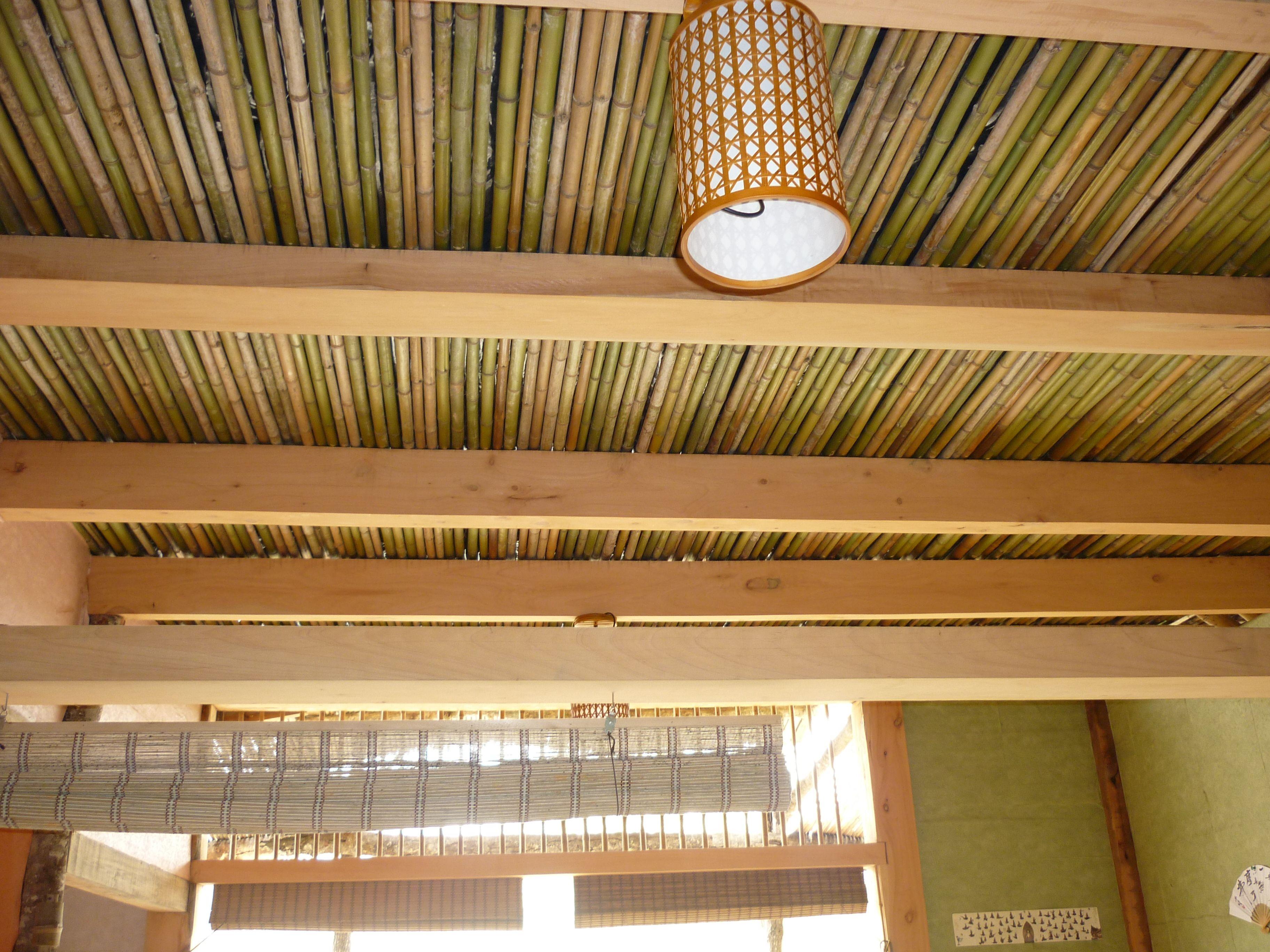 Cielo Razo De Bambu Mi Jardin Ceiling Design Decor Y