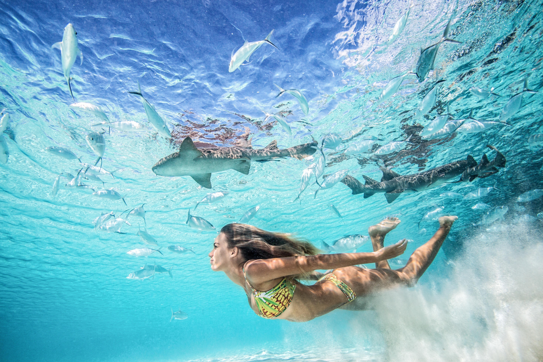 Photo via : @franceduque www.gremlymedia.com # : tropical ...
