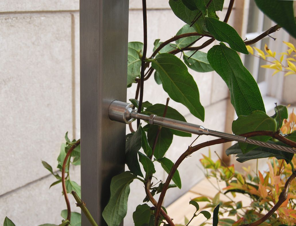 Plant Training Wire and Frames | Tensioned Wire Systems | Pinterest