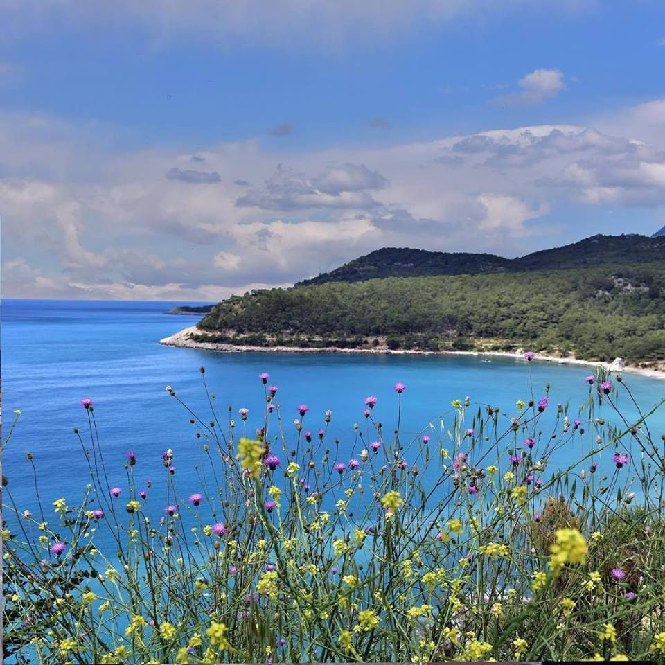 An atmosphere and environmnet you'll not find anywhere else. Adrasan, 100 km outside of Antalya, promises you peace, comfort, and a peerless bay.