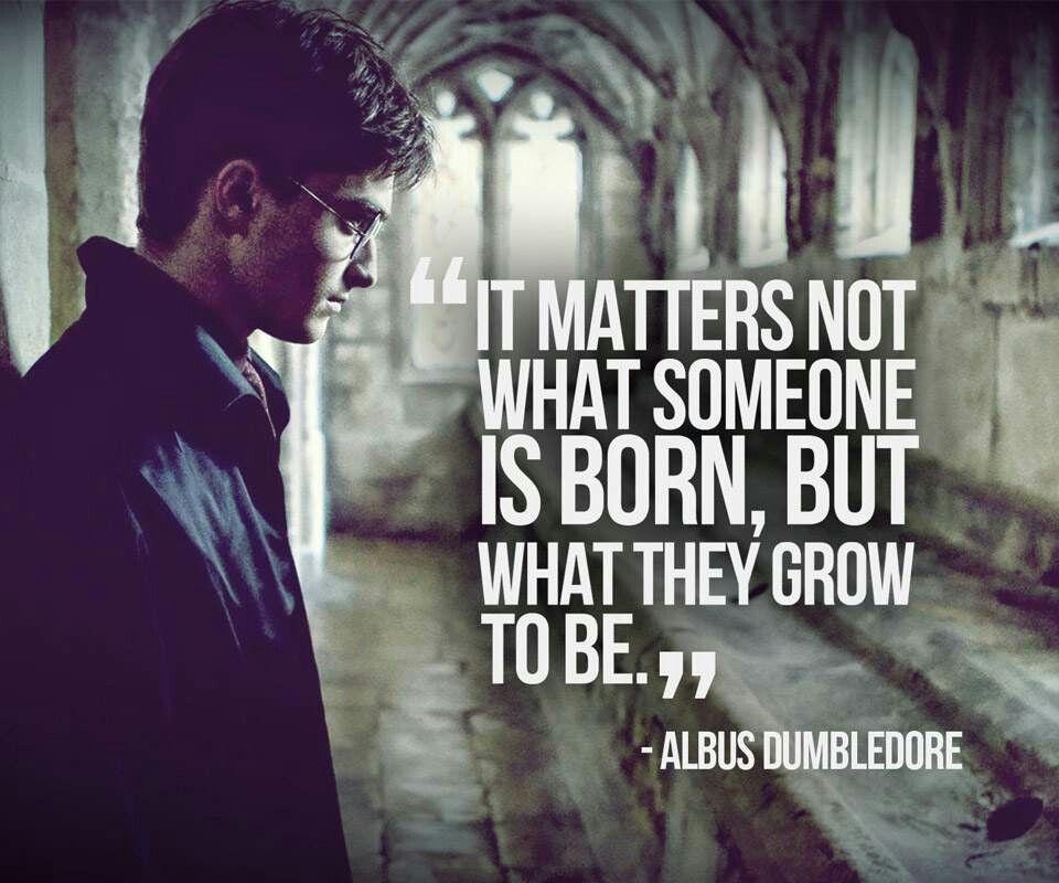 20 Harry Potter quotes that we love | Senior Quote Ideas ...