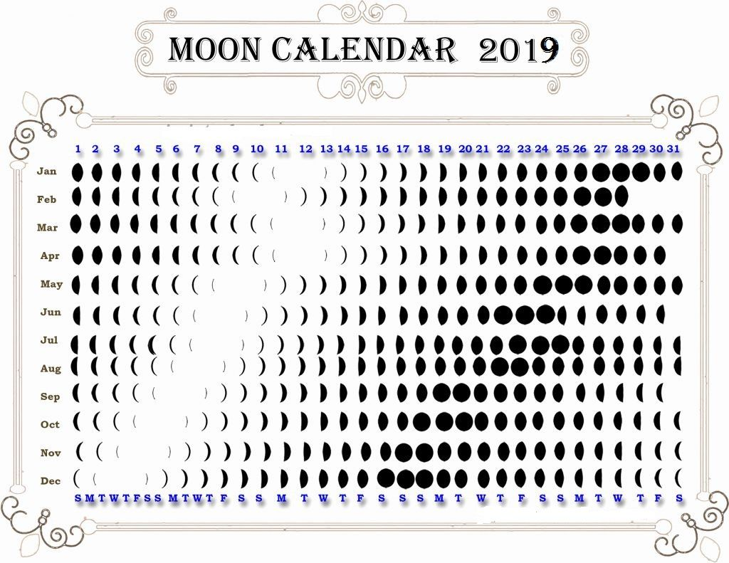 Full Moon And New Calendar 2019 Moon Phase Calendar Moon