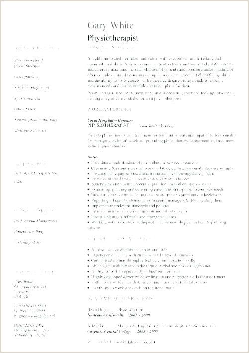 Curriculum Vitae Format Doc For Freshers In 2020 Architect Resume Curriculum Vitae Format Solution Architect