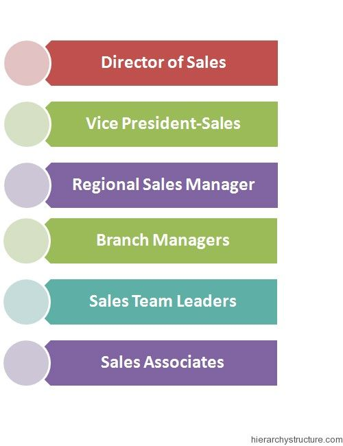 Sales Management Hierarchy Sales And Marketing Sales Manager Hierarchy