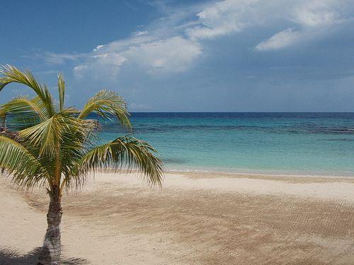 Beach paradise_L E Carmichael_WANA Commons