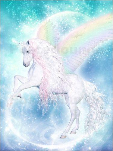 Dolphins Dreamdesign Regenbogen Einhorn Pegasus Unicorn Pictures Unicorn And Fairies Unicorn Poster
