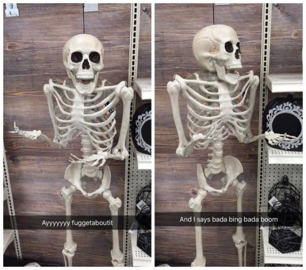 48bd6511143f2c3fec14035970d9b5b3 16 skeleton memes that are 2 spooky 4 u memes, funny posts and