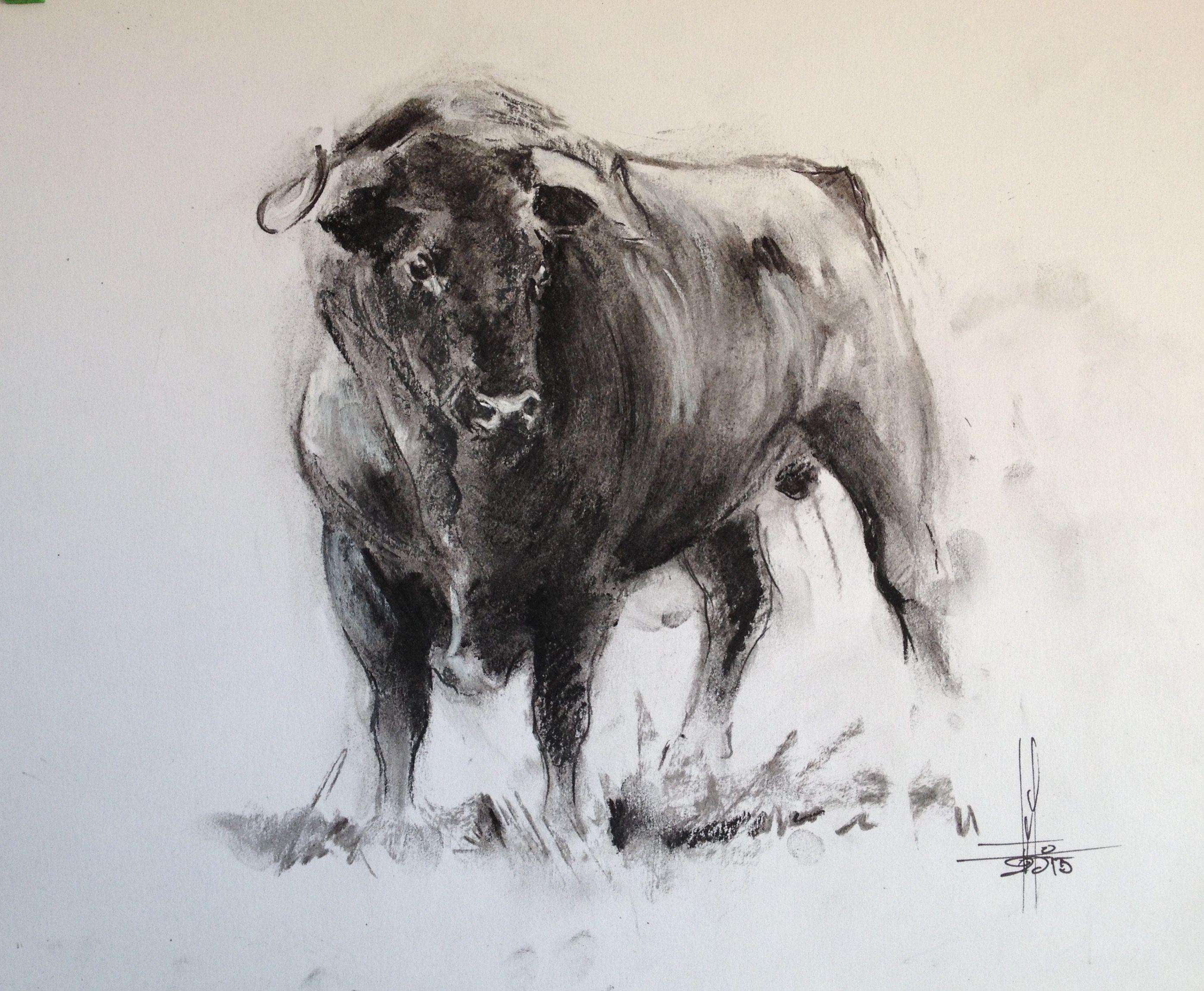 Toro Bravo En El Campo Dibujo Lapiz Carbon A3 Toros Pintados