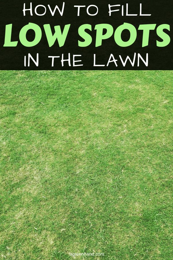 How To Fill Low Spots In The Lawn is part of Lawn problems, Lawn, Lawn care, Lawn care tips, Diy lawn, Diy garden projects - The most common issue might happen with your lawn will be an uneven lawn with lawn ruts, low spots, or holes