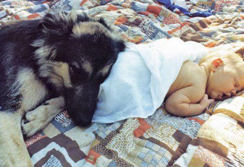Очаровательные парочки: малыши, спящие в обнимку со своими ...