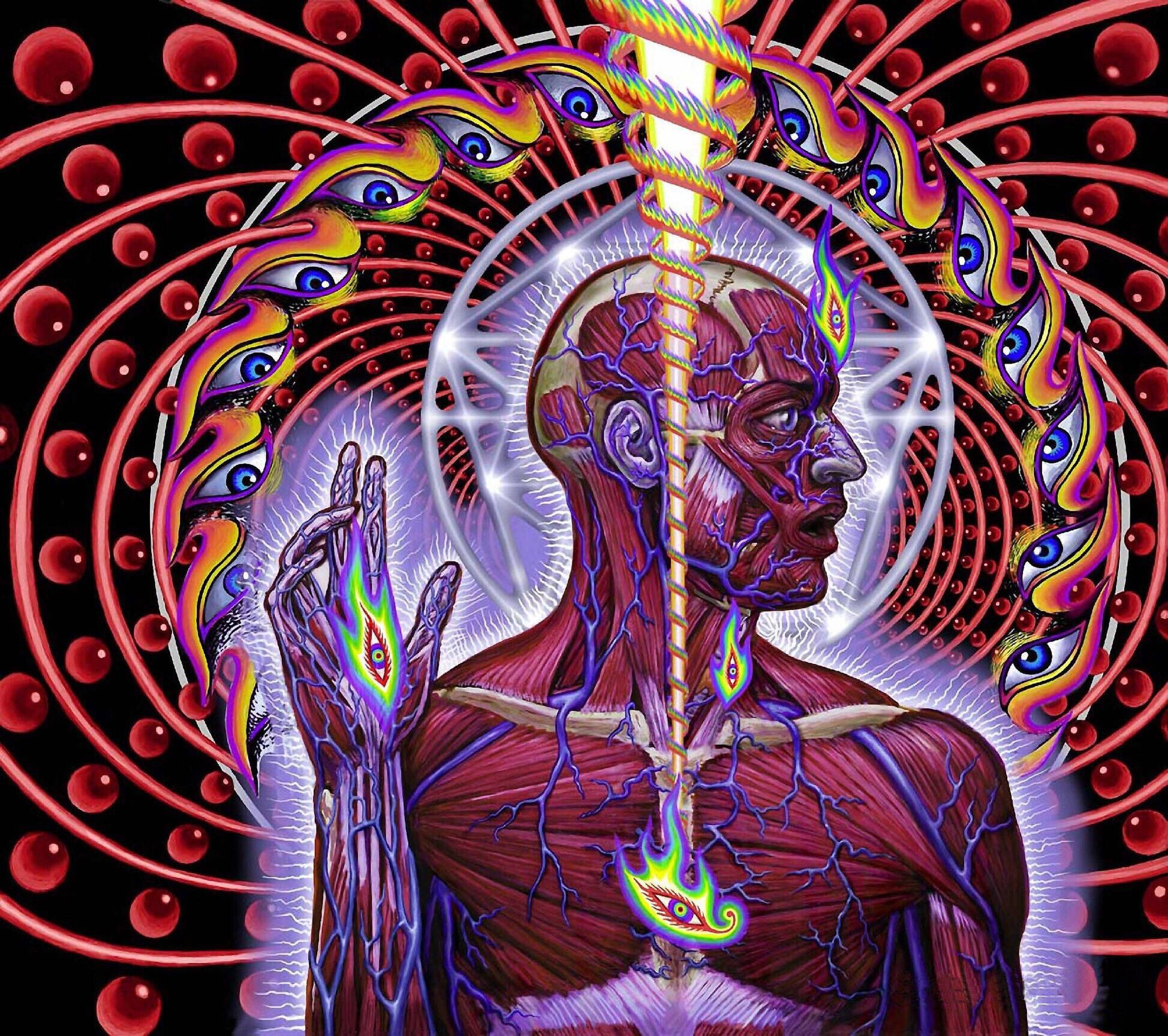 The Album Cover Of The Progressive Rock Band Tool Lateralus Alex Gray Art Grey Abstract Art Alex Grey
