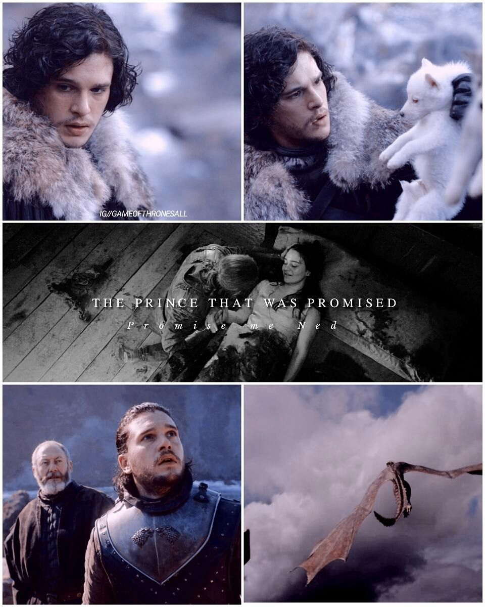 Jon Snow son of Rhaegar Targaryen                 #got
