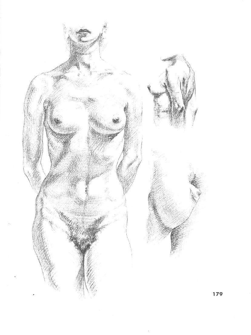 Atlas Of Human Anatomy For The Artist Human Anatomy Drawing
