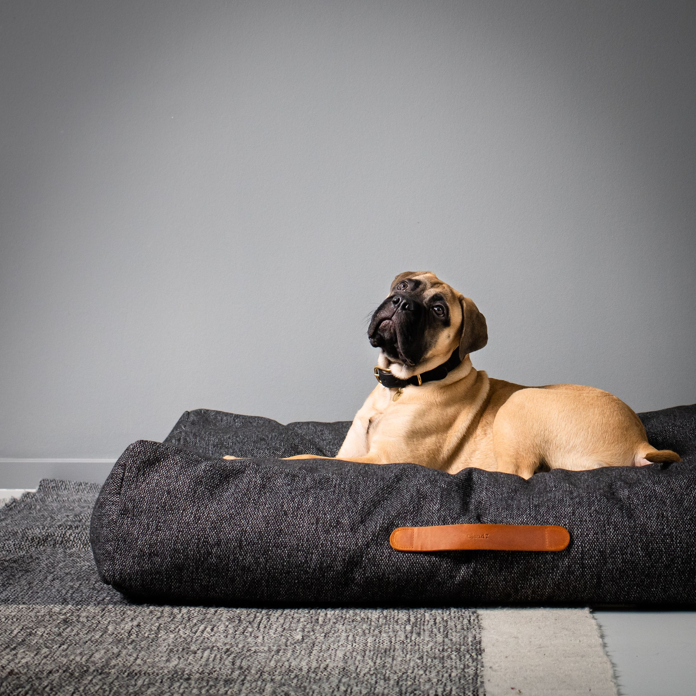 Dog Bed Homey Melange Anthra Grosse Hunde Hunde Bett Hunde