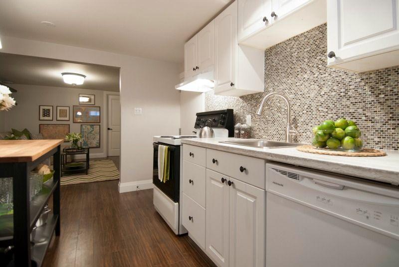 Open Concept Basement Apartment Kitchen PARA Paints Walls NETWORK Impressive Basement Kitchen Designs Concept