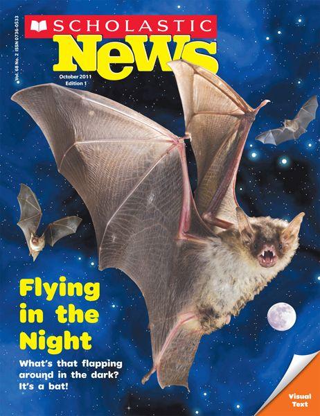 Oct 2011 - Flying in the Night digital copy