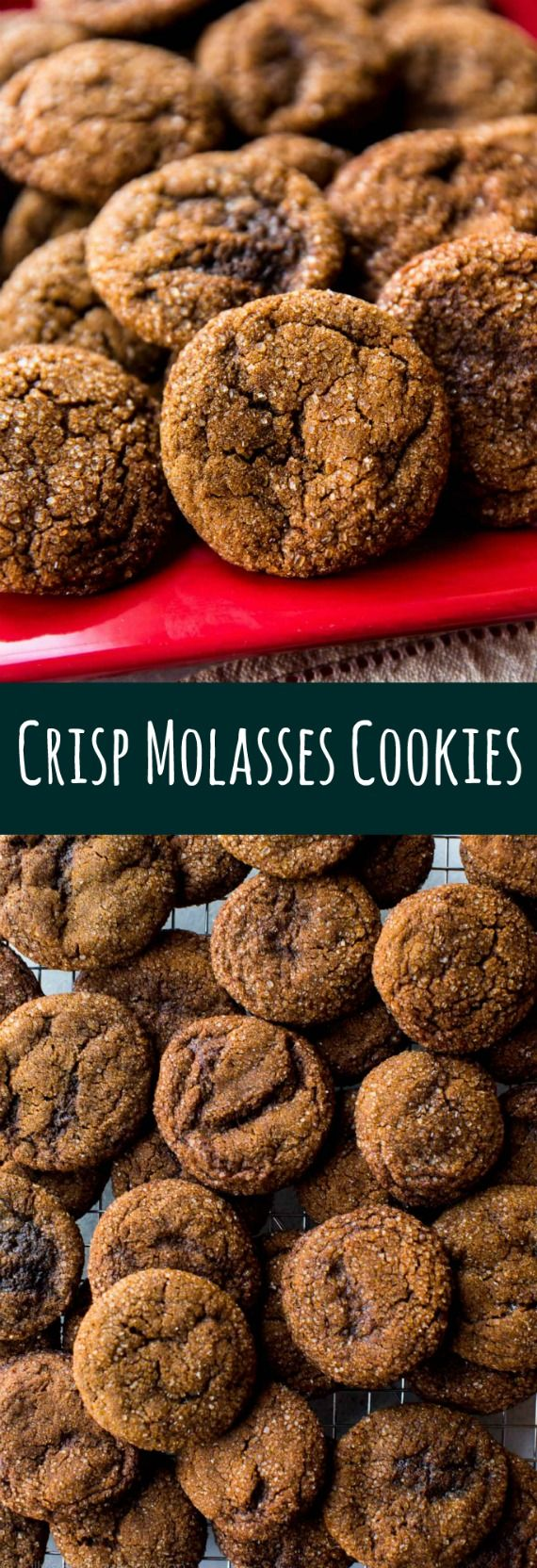 How to make CRISP ginger molasses cookies. These Christmas cookies have so much flavor with ginger, cinnamon, cloves, and molasses! Recipe on sallysbakingaddiction.com