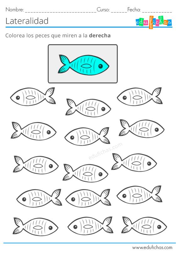 Ejercicios De Lateralidad Para Ninos Aprender Izquier Ejercicios De Lateralidad Actividades De Matematicas Preescolares Actividades Del Alfabeto En Preescolar
