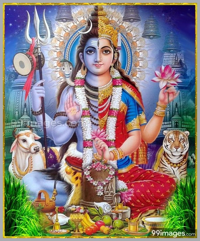 beautiful pictures of lord shiva and parvati hd