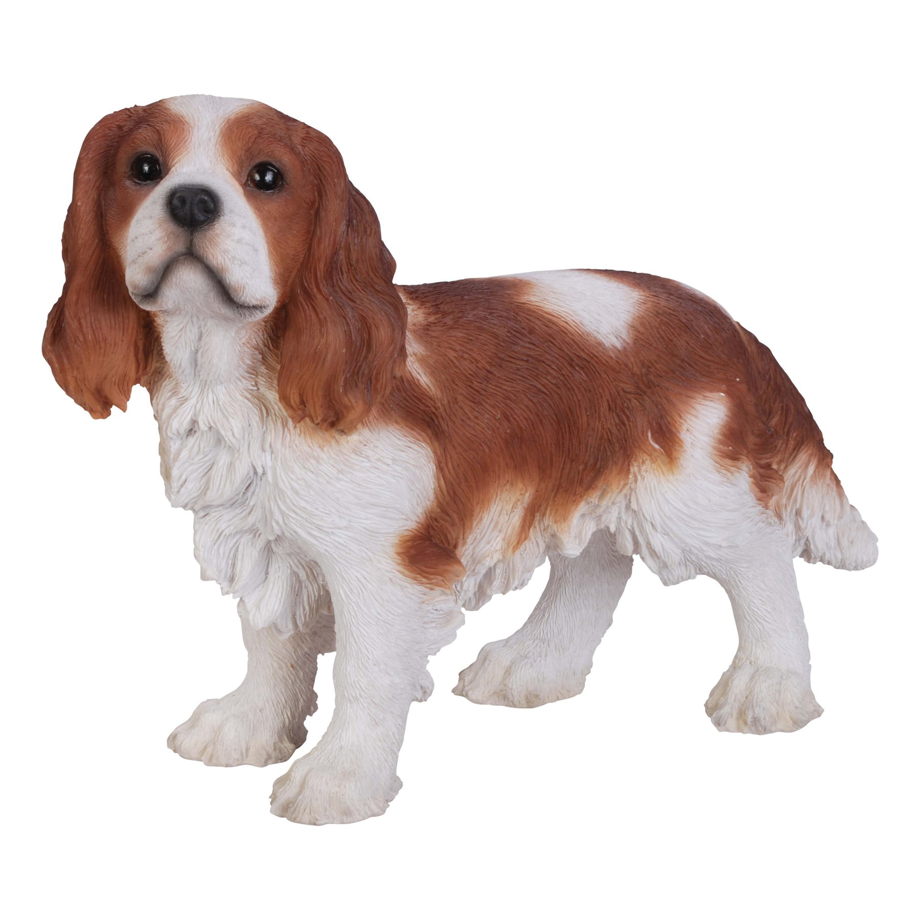 Hiline gift ltd brown and white king charles spaniel standing
