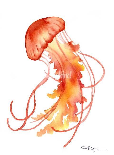"""Photo of """"Jellyfish"""" av David Rogers"""