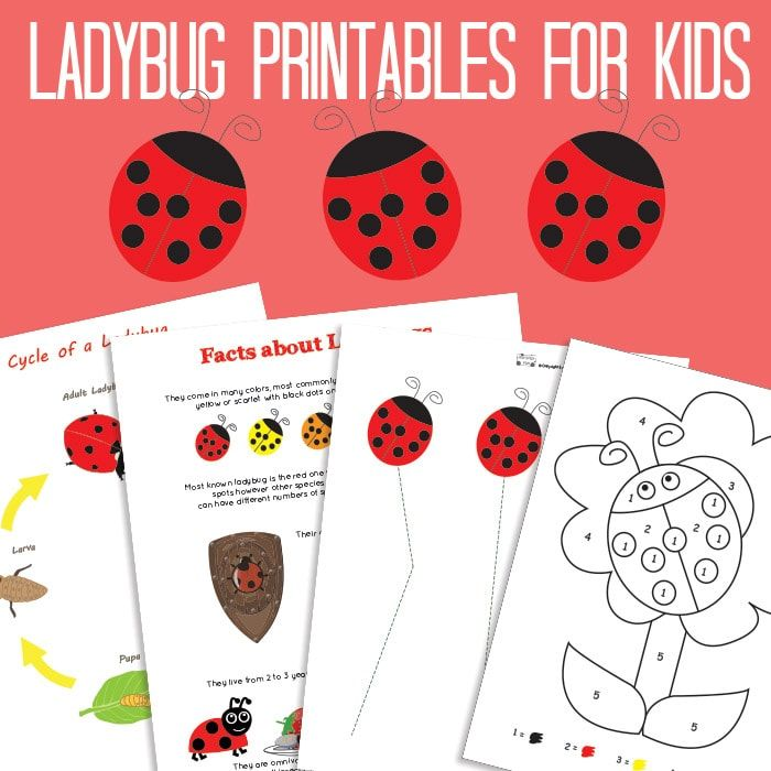 ive been a busy little bug and created a whole lot of ladybug printables for all ages and here they are well start with preschoolers and kids in