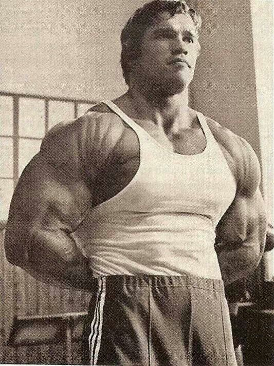 Arnold schwarzenegger looking ripped golden era bodybuilding arnold schwarzenegger looking ripped malvernweather Gallery